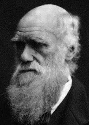 Hassfigur für Amerikas rechte Christen: Charles Darwin