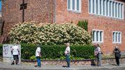 Ausgangsbeschränkungen im Saarland müssen sofort gelockert werden