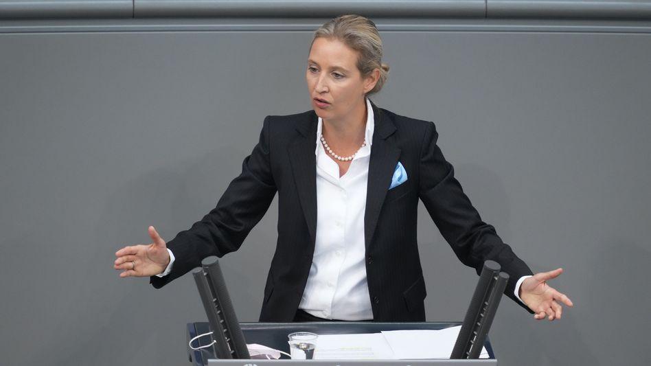 Alice Weidel: Parteispenden aus Nicht-EU-Staaten von mehr als 1000 Euro sind illegal