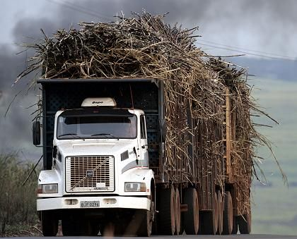 """A truck laden with sugar cane in Brazil: """"Biofuels compete with food production."""""""
