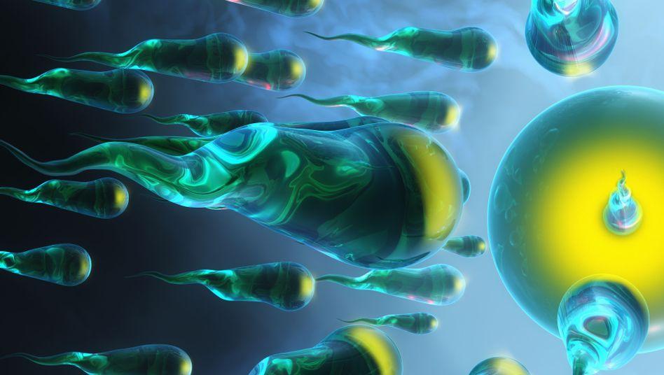 Auf dem Weg zur Eizelle: Nur die kräftigsten Spermien kommen an