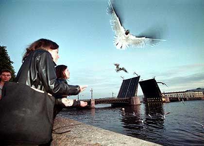 """Die """"Weißen Nächte"""" von Sankt Petersburg: Ende Juni wird es zwei Wochen lang kaum dunkel"""