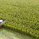 Bauernpräsident beklagt die dritte schlechte Ernte in Folge