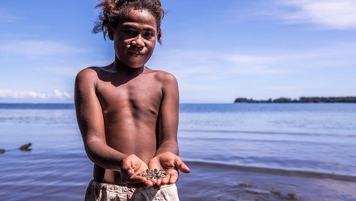 Das Muschelgeld der Tolai