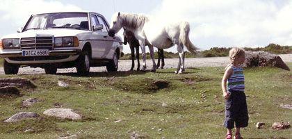 Christoph Schwennickes Mercedes 230E: Eine Perle von einem Auto