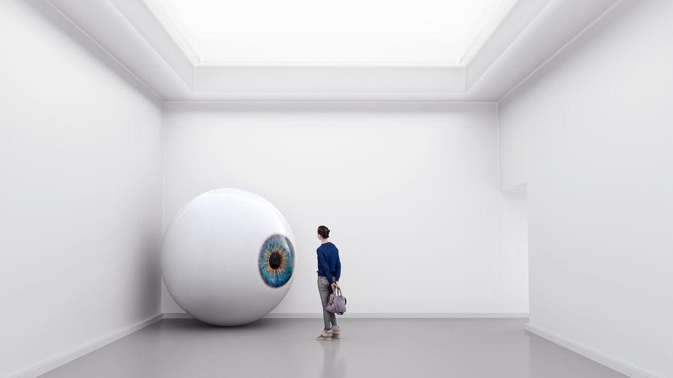 Das Auge im Fokus