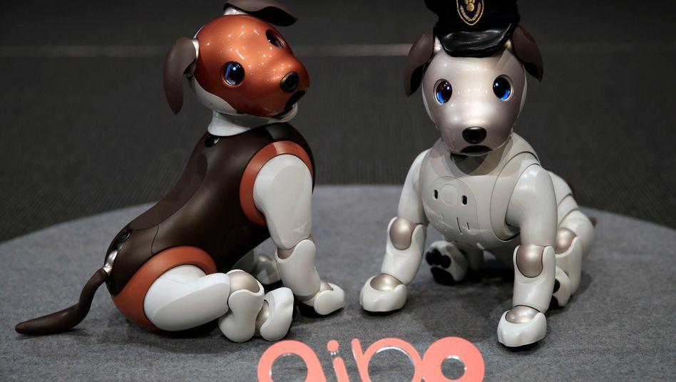 Aibo-Modelle