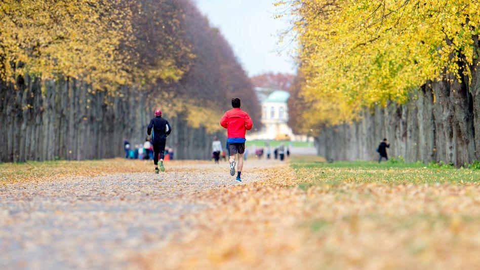 Jogger in Hannover: »Eine feste Trainingszeit kann dazu beitragen, dass Sport zur Gewohnheit wird«