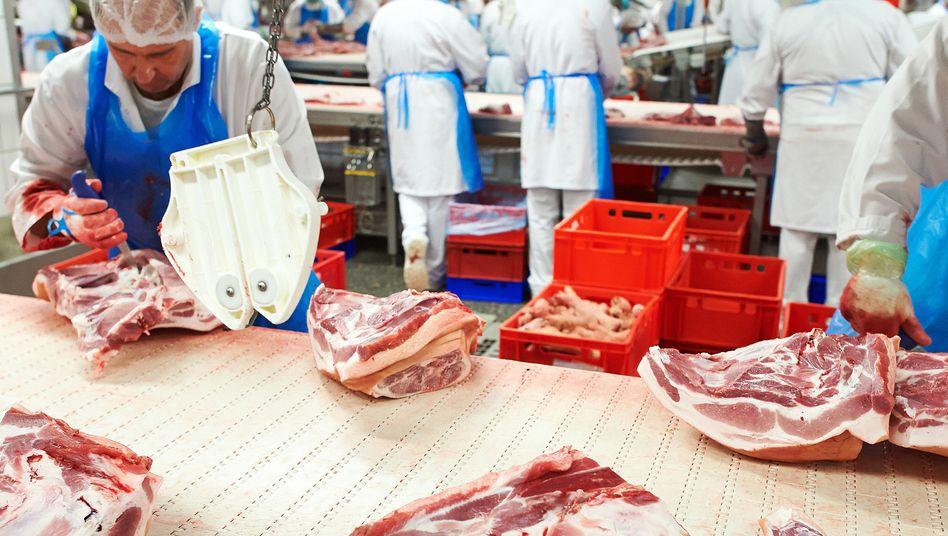 Fließbandarbeit in einer Fleischfabrik von Tönnies in Rheda-Wiedenbrück