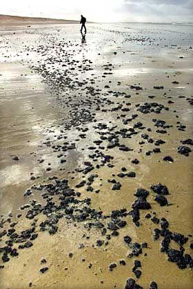Ölpest in Frankreich: Schmierige Fladen am Strand von Cap Ferret