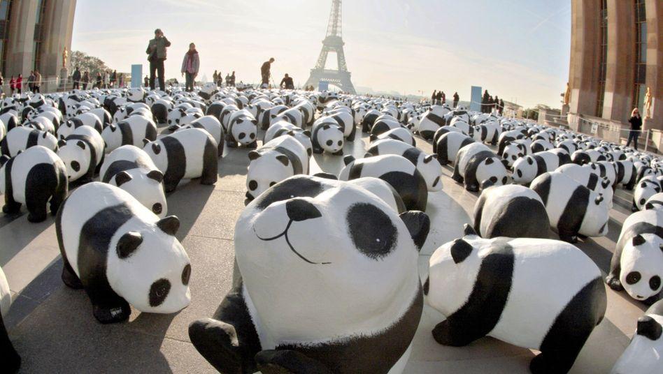 WWF-Aktion in Paris 2008: Diskussion nach TV-Dokumentation