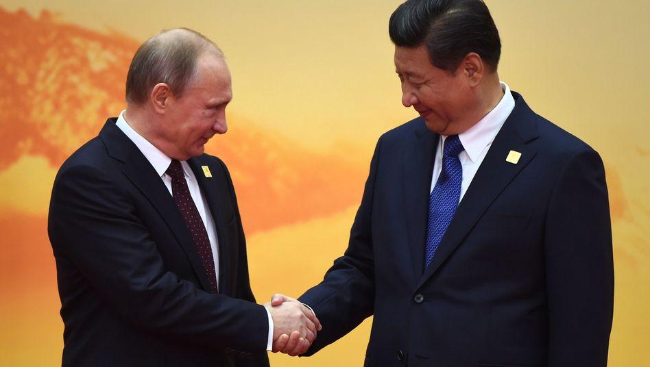 Wissenschaftliche Meriten bei Spitzenpolitikern (hier Wladimir Putin und Xi Jinping): Ach, sind Sie auch Doktor?