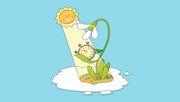 Woher wissen Pflanzen, dass Frühling ist?