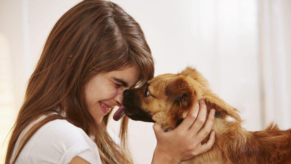 Kuscheln mit dem Hund: Der Experte vom Landesgesundheitsamt empfiehlt, sich nicht vom Haustier das Gesicht ablecken zu lassen