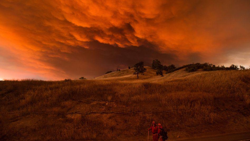 Feuersbrunst nahe Clearlake, Kalifornien (August 2015)
