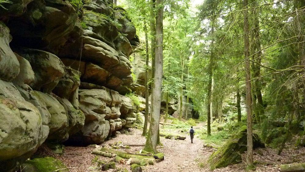 Bollendorf: Wandern in der Eifel