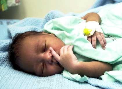Die kleine Angel: Von Hündin gerettet