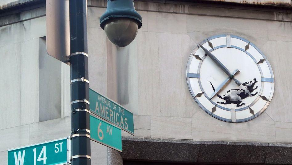"""Die """"Rennende Ratte"""" am Abrissgebäude in New York"""