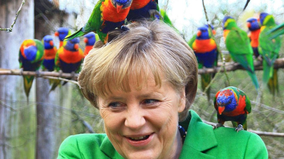 Kanzlerin Merkel mit Papagei (im Vogelpark Marlow): Wie lange hält Schwarz-Gelb durch?