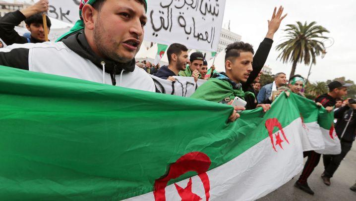 Proteste gegen das Regime: Algeriens Unmut wächst