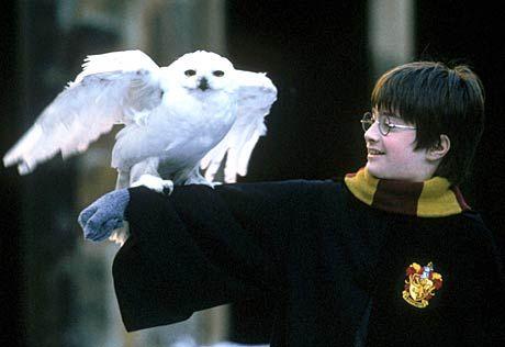 """Begehrte Beute: Requisiten aus dem """"Harry Potter""""-Film"""