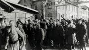 """""""Hier in Auschwitz hatte ich keine Albträume über Auschwitz"""""""