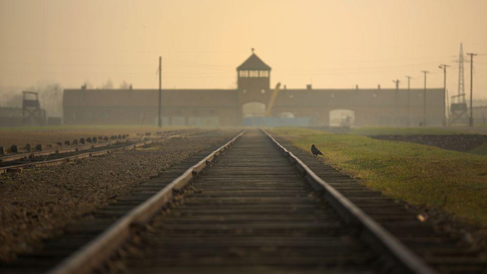Bilder des Grauens: Der Holocaust, ein wucherndes Geschwür?