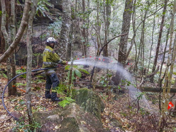 Löscharbeiten: Spezialkräfte überflogen das Gebiet mit Hubschraubern, auch Feuerschutzmittel kamen zum Einsatz