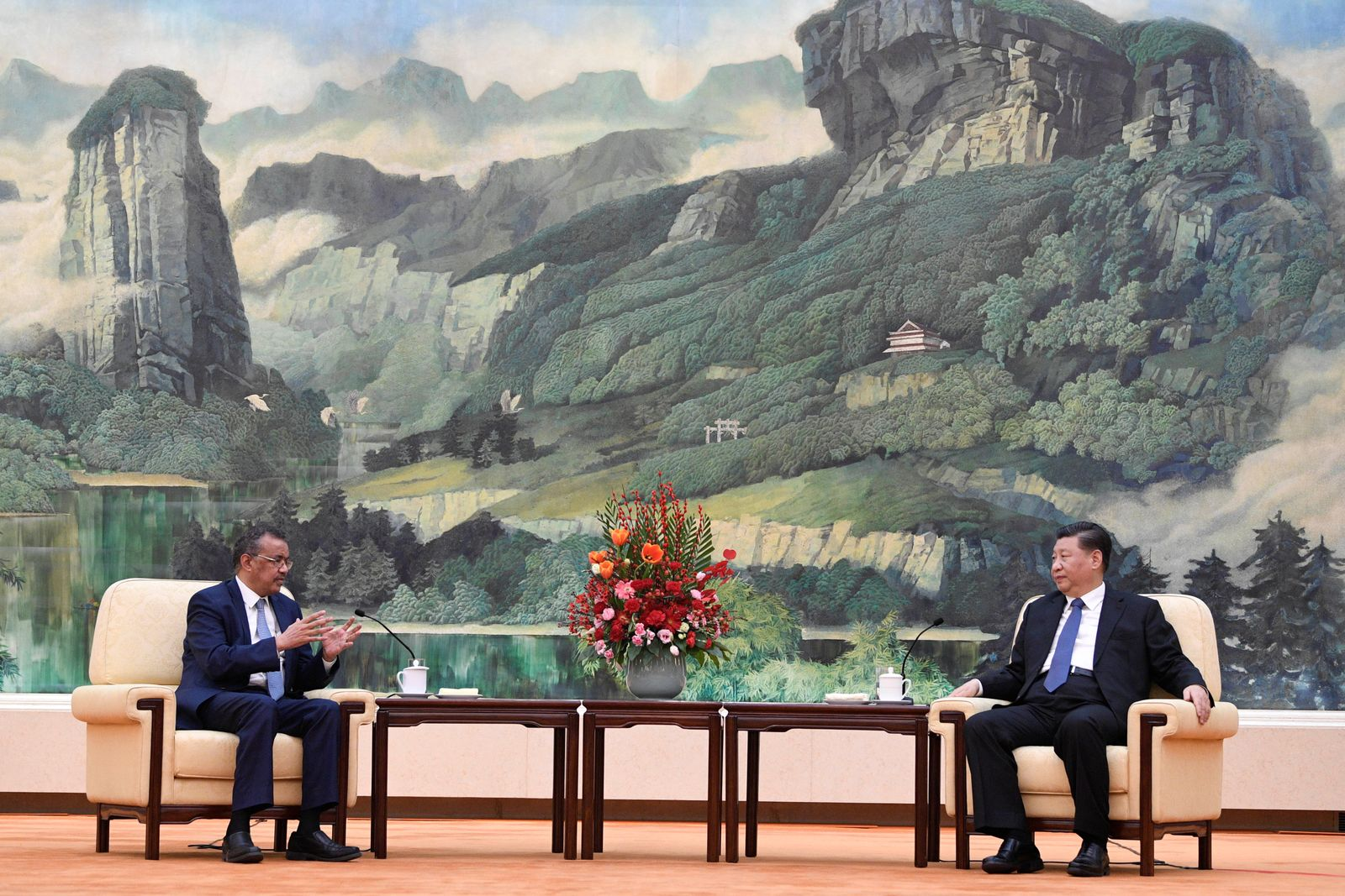 Tedros Adhanom, director general of the World Health Organization, meets with Chinese President Xi jinping before a meeting at the Great Hall of the People in Beijing