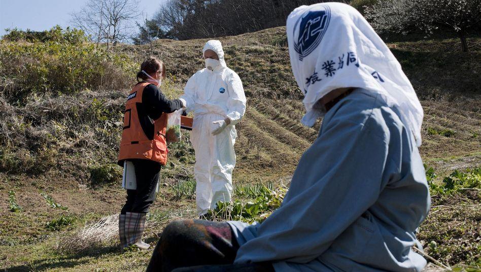 Greenpeace-Strahlenmessungen in der Präfektur Fukushima: Rückkehr in die Sperrzone?