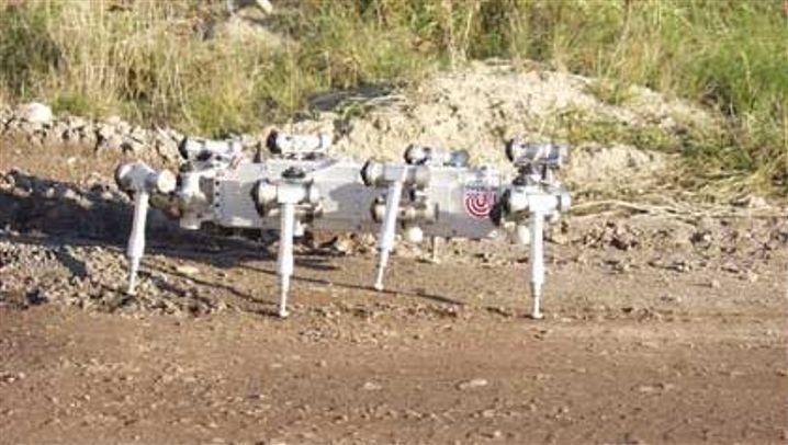 Stählerne Beine: Skorpion-Roboter soll auf dem Mars klettern
