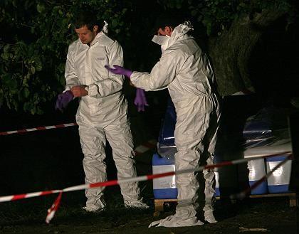 Feuerwehrleute bei Görlitz: Erneuter Vogelgrippe-Fall in Deutschland