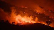 Buschfeuer in Australien vereinen sich zu Mega-Brand