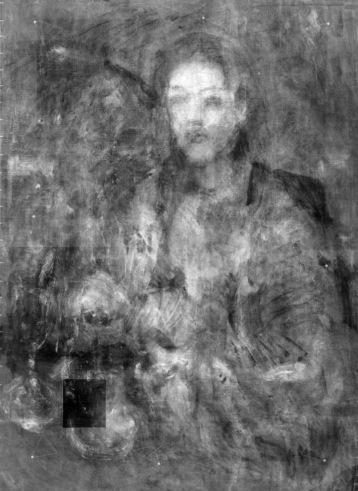 Aufnahme des versteckten Gemäldes
