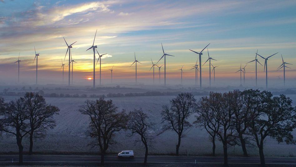 Viel Wind, viel Sonne: Die Erzeuger erneuerbarer Energien profitieren wie hier in Brandenburg von günstigen Witterungsbedingungen zu Jahresbeginn
