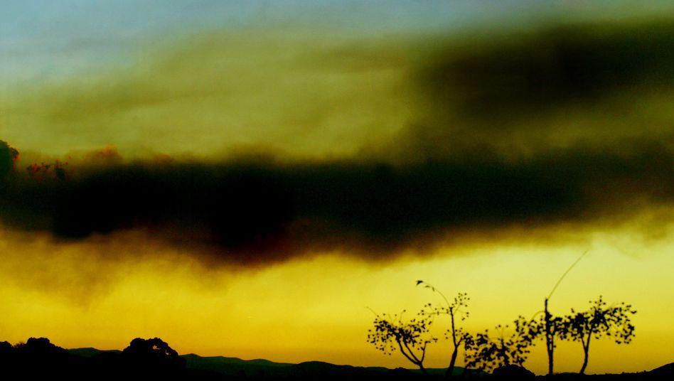 Rauchwolken über Canberra