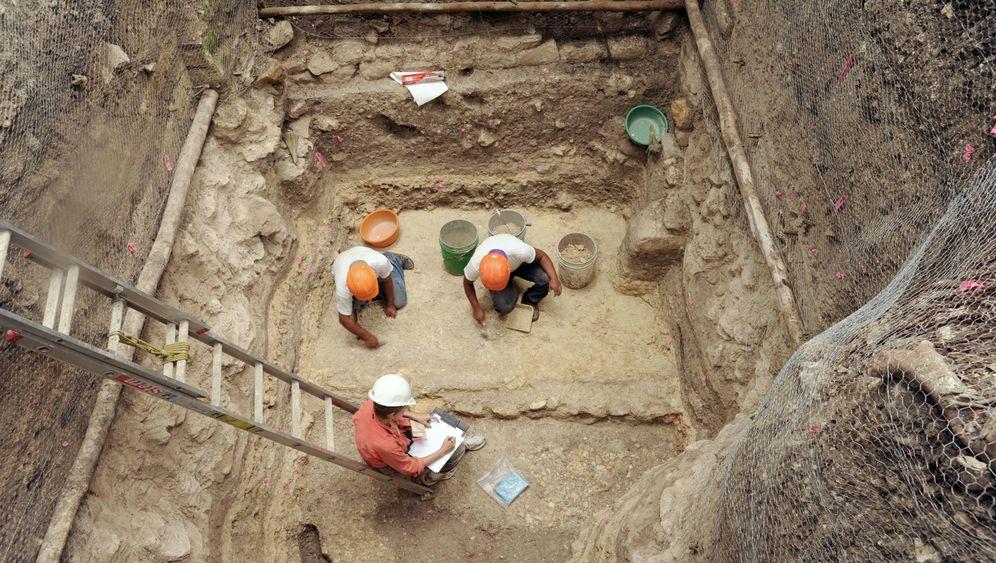 Maya: Auf der Spur der Bauleute von Ceibal