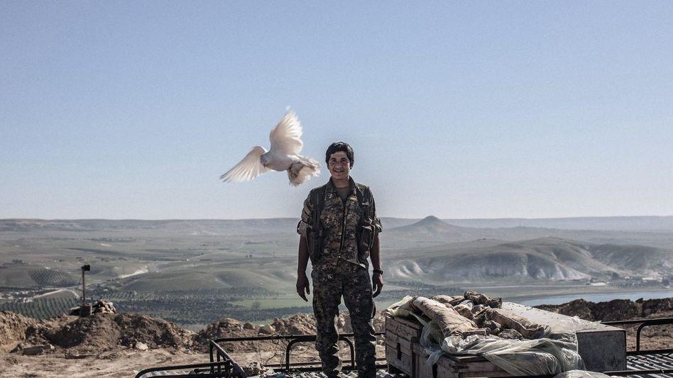 SDF-Milizionär bei Tischrin: Der neue Name ist ein geschickter Schachzug und gutes Marketing