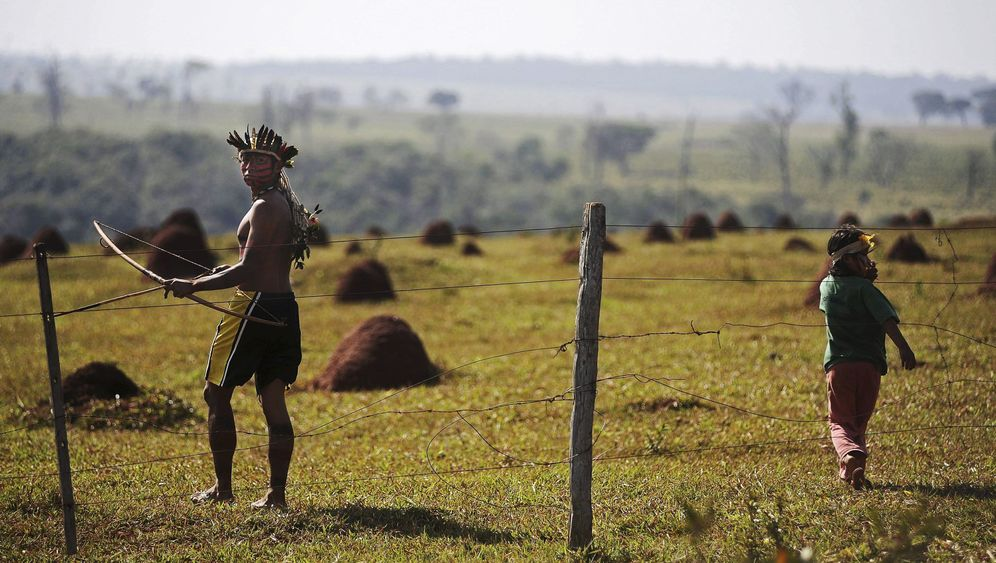 Photo Gallery: Defending the Tribe in Brazil