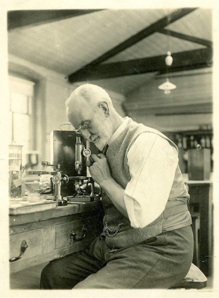 Der britische Forscher George Parker Bidder leitete das Experiment