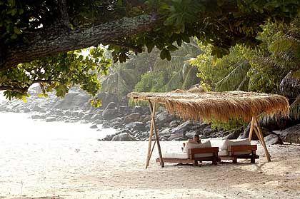 Seychellen-Strand: Artenschutz für Promis