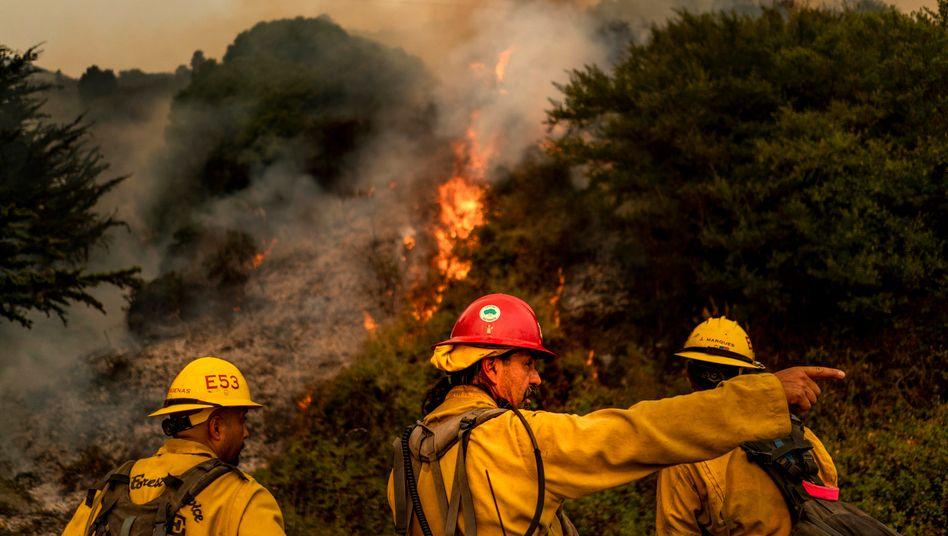 Feuerwehrleute im Los Padres National Forest in Kalifornien