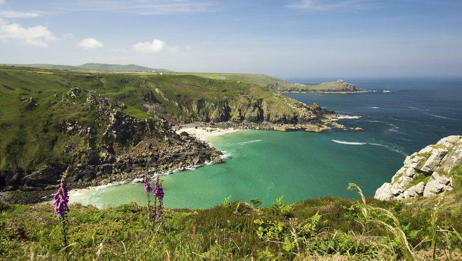 Cornwall: Mildes Klima auch im Februar