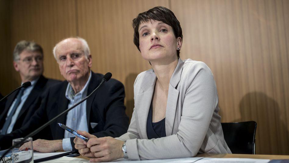 AfD-Politiker Meuthen, Glaser und Petry (v. l.)