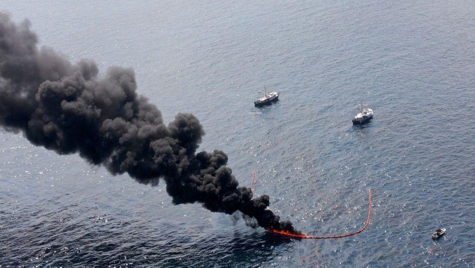 Ölpest im Golf von Mexiko: Verheerende Folgen für die Umwelt