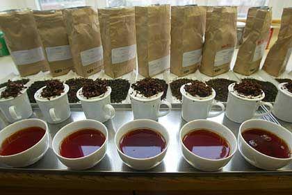 So ist es richtig: Purer Assam-Tee ohne Milch