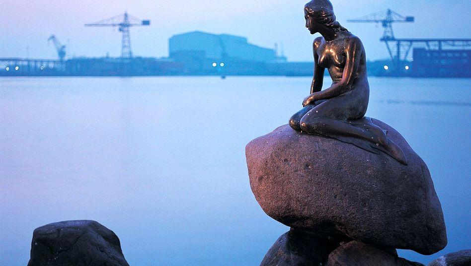 """""""Kleine Meerjungfrau"""" im Hafen von Kopenhagen: Nachbarn sollen bei der Kontrolle helfen"""