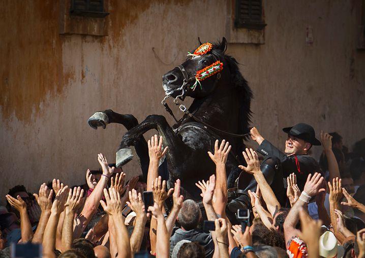 Fiesta de San Joan in Ciutadella