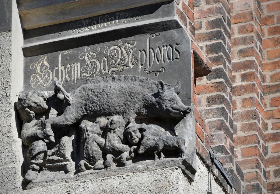 """""""Judensau""""-Relief in Wittenberg: Ein hartnäckiger Gegner"""