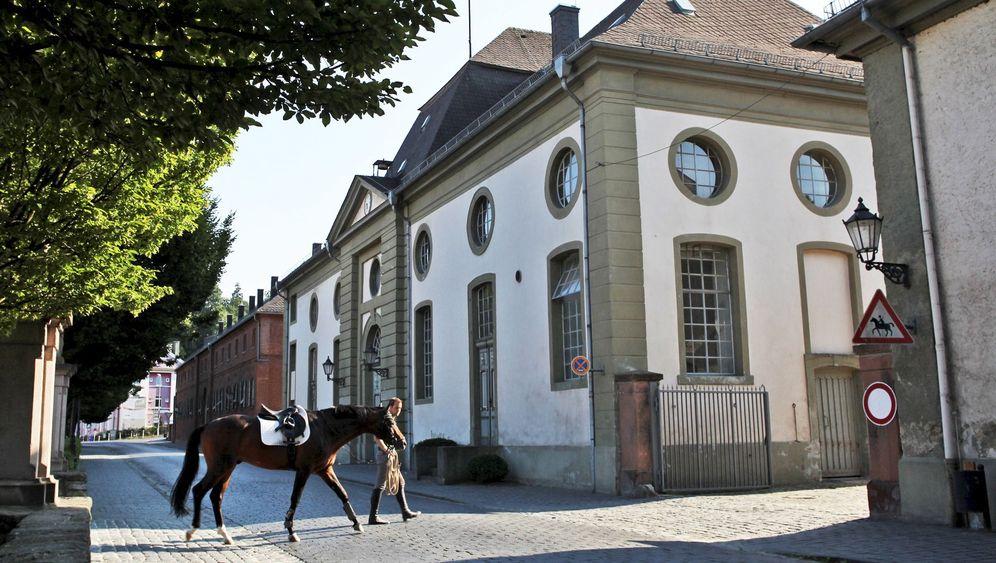 Touren in Deutschland: Per Rad von Schloss zu Schloss
